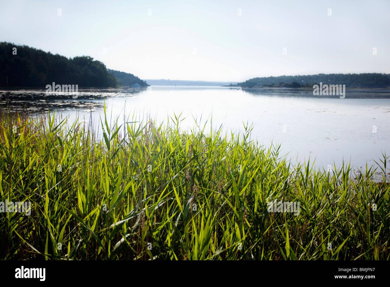 Lago bajo un cielo azul Foto de stock