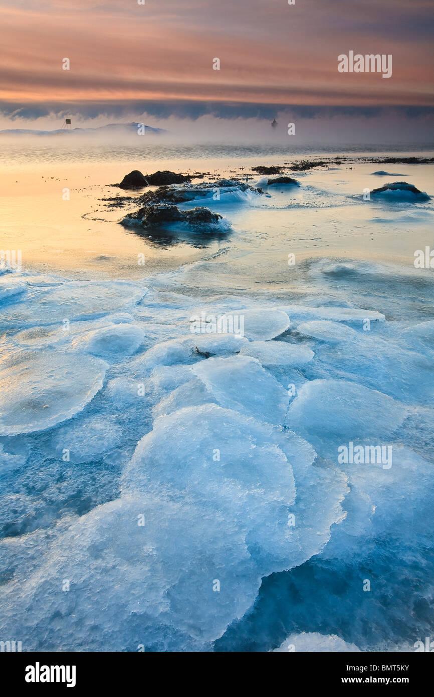 Icy landscape en Larkollen en Rygge kommune, Østfold fylke, Noruega. Imagen De Stock