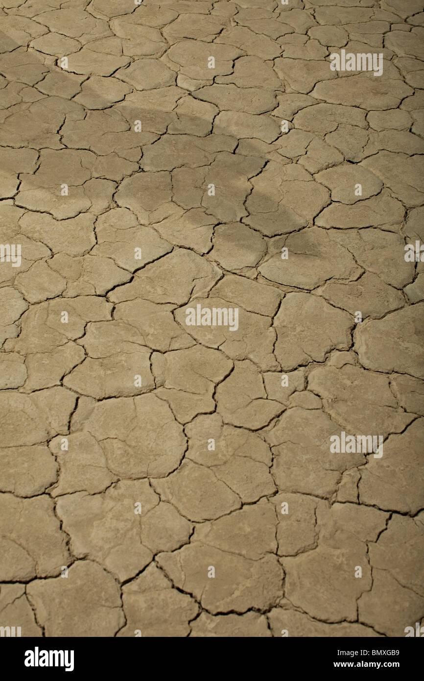 La superficie agrietada del lago seco con sombra Imagen De Stock