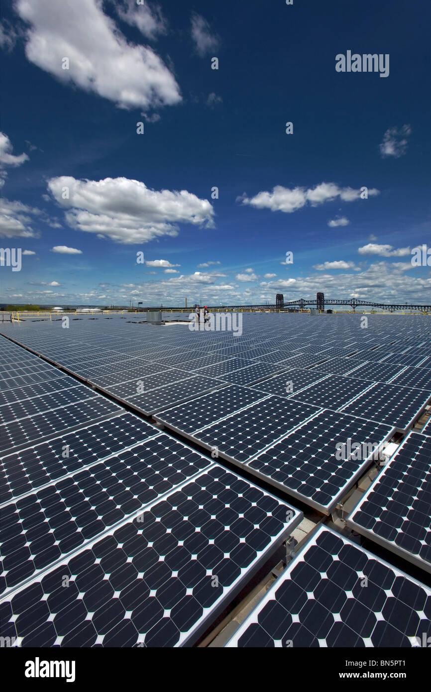 Recolección de la luz solar paneles solares Imagen De Stock