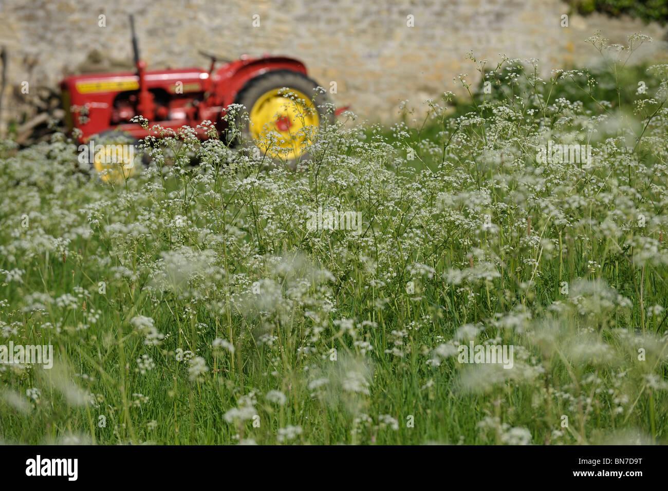 Tractor en campo florido Imagen De Stock