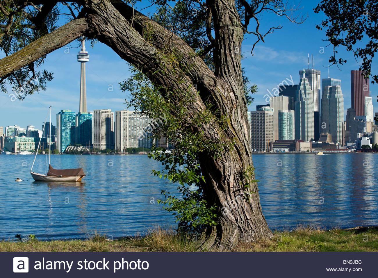 Toronto Island Park con el skyline de Toronto, Ontario, Canadá Imagen De Stock