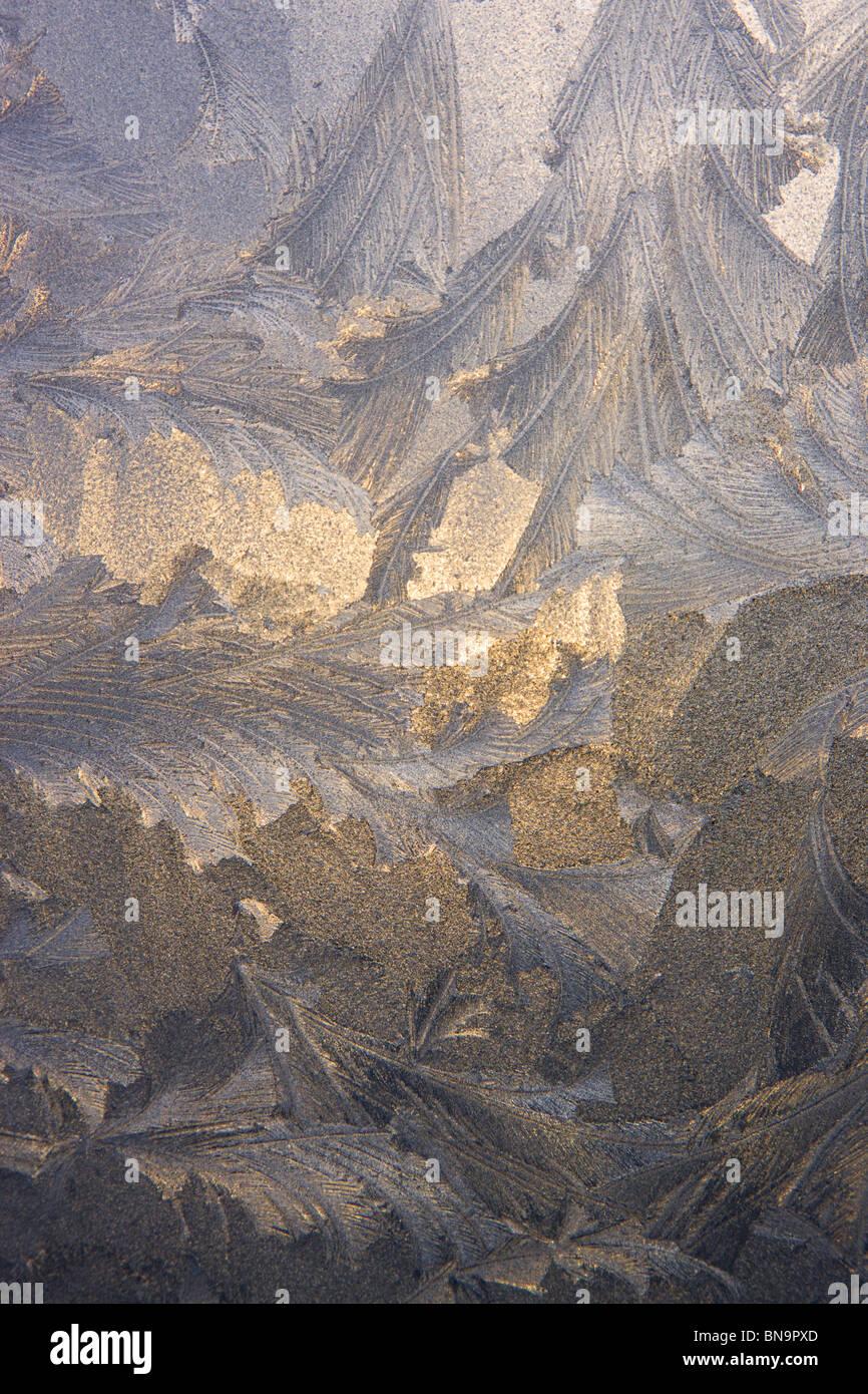 Patrones de hielo sobre una ventana, Seward, Alaska. Imagen De Stock