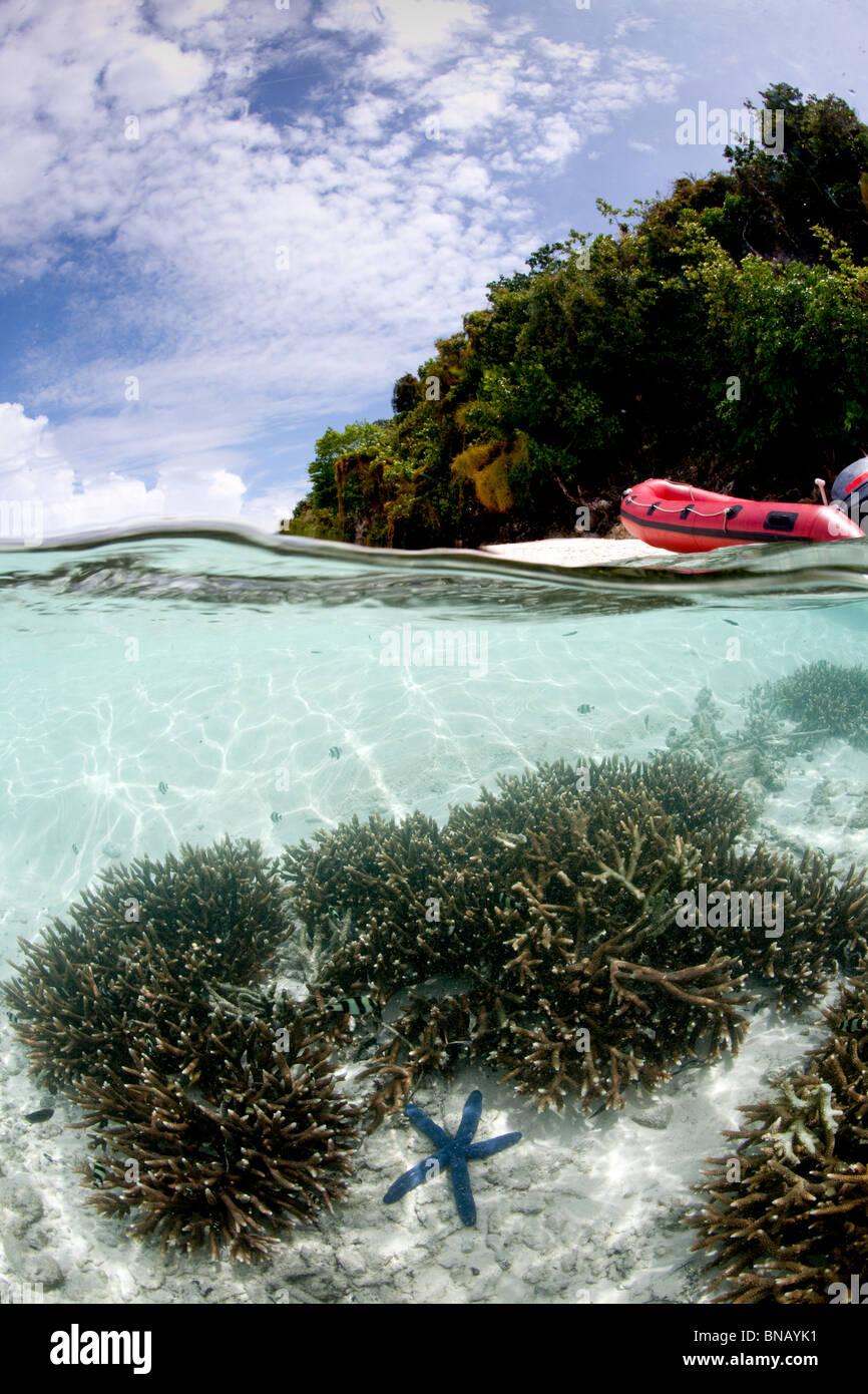 Over/under con la isla. Foto de stock