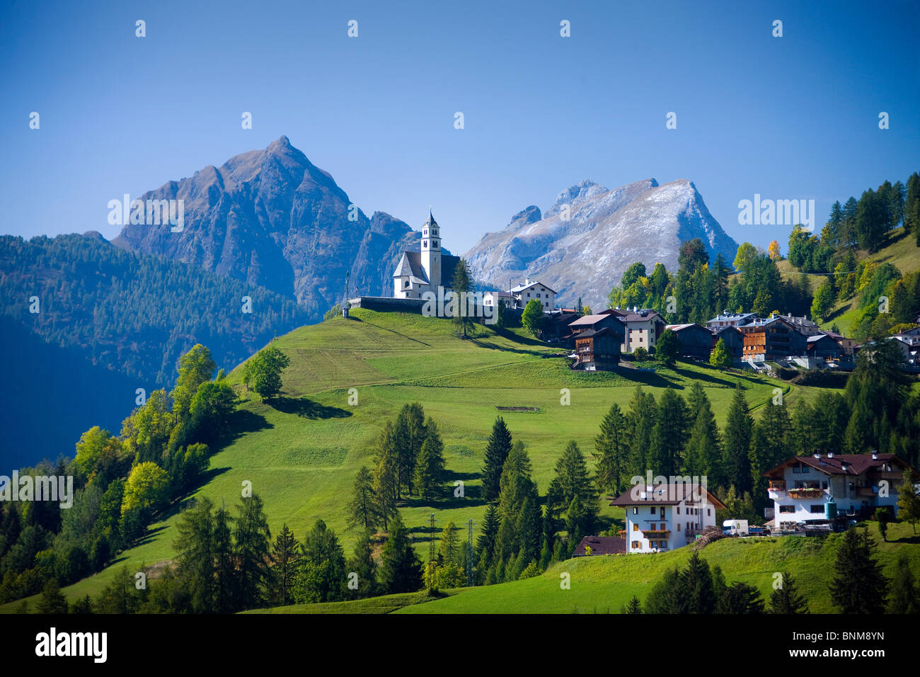 Italia Alpes Dolomitas Veneto Cadore hill wood forest meadows holidays travel, Foto de stock