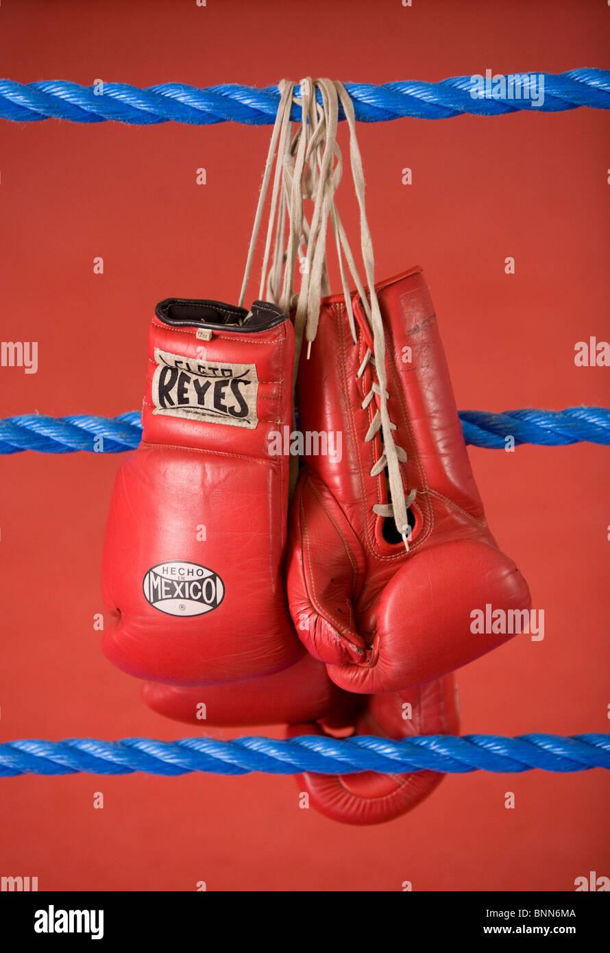 Guantes de boxeo rojo colgando de las cuerdas de un cuadrilátero de boxeo. Fotografía por James Boardman Imagen De Stock