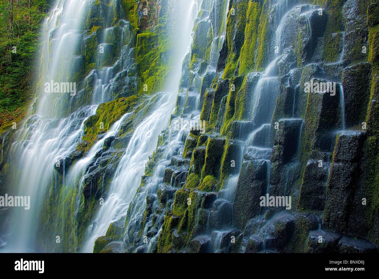 Proxy inferior cae en Proxy Falls State Park en las tres hermanas desierto Imagen De Stock