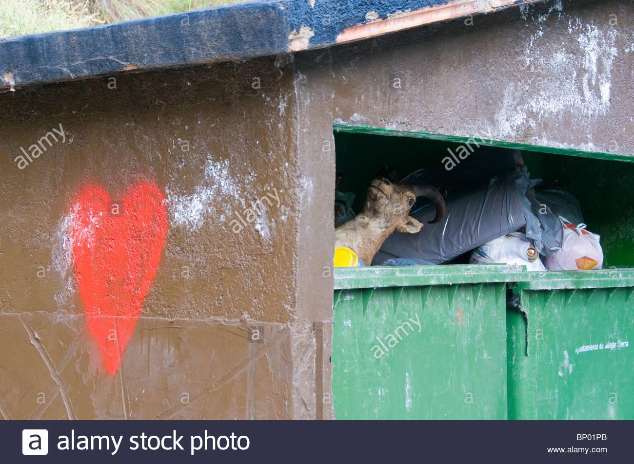 Una cabra salvaje de peluche arrojados a un contenedor de basura Imagen De Stock