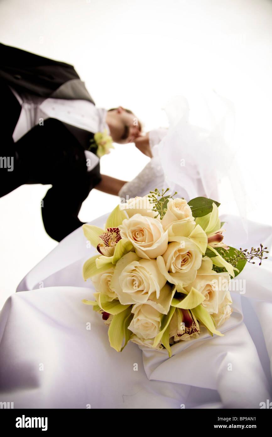 Stoney Creek, Ontario, Canadá; un ángulo bajo la vista de la novia y el novio besos Imagen De Stock