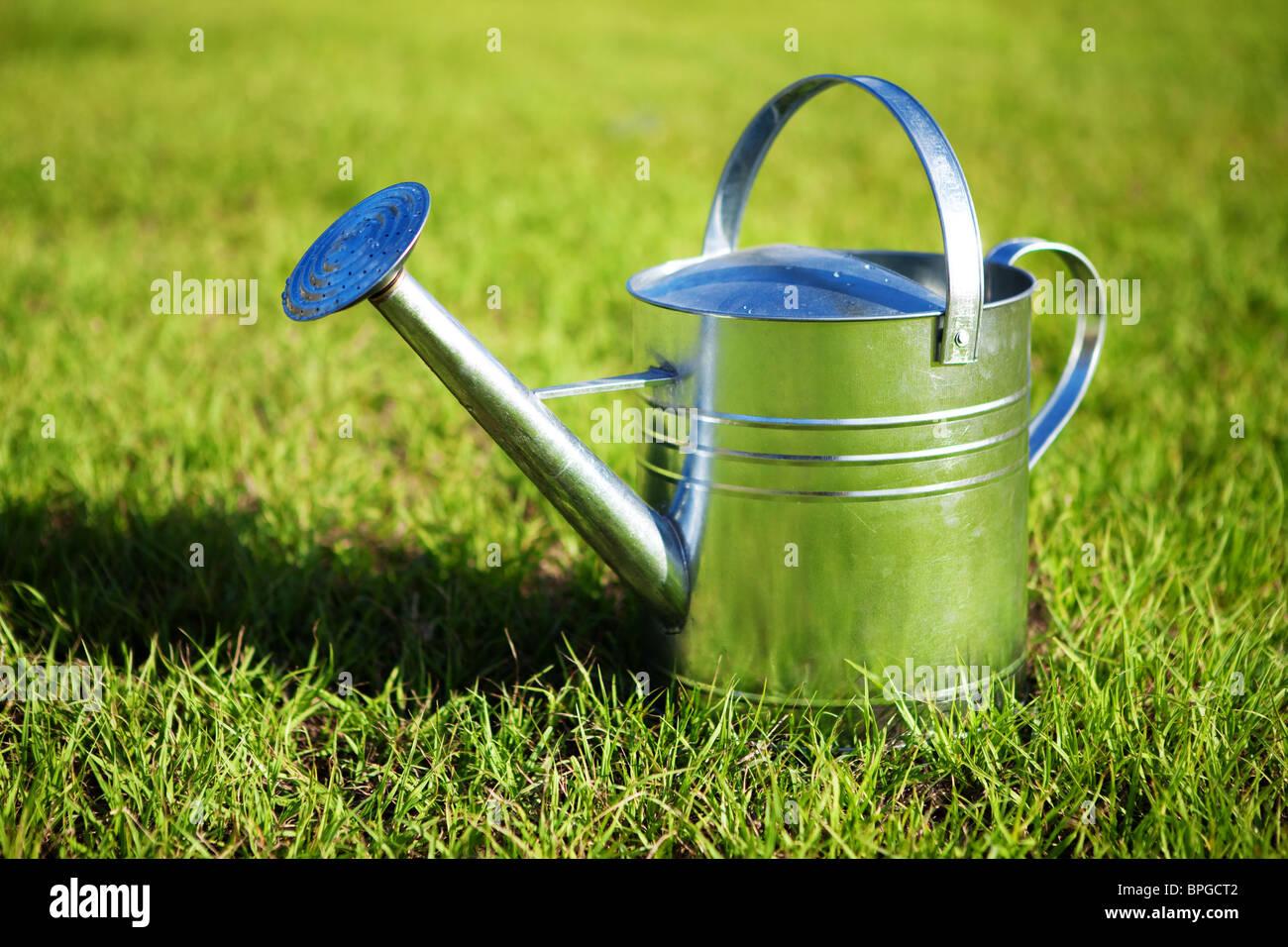 Regadera de metal brillante en la hierba verde Foto de stock