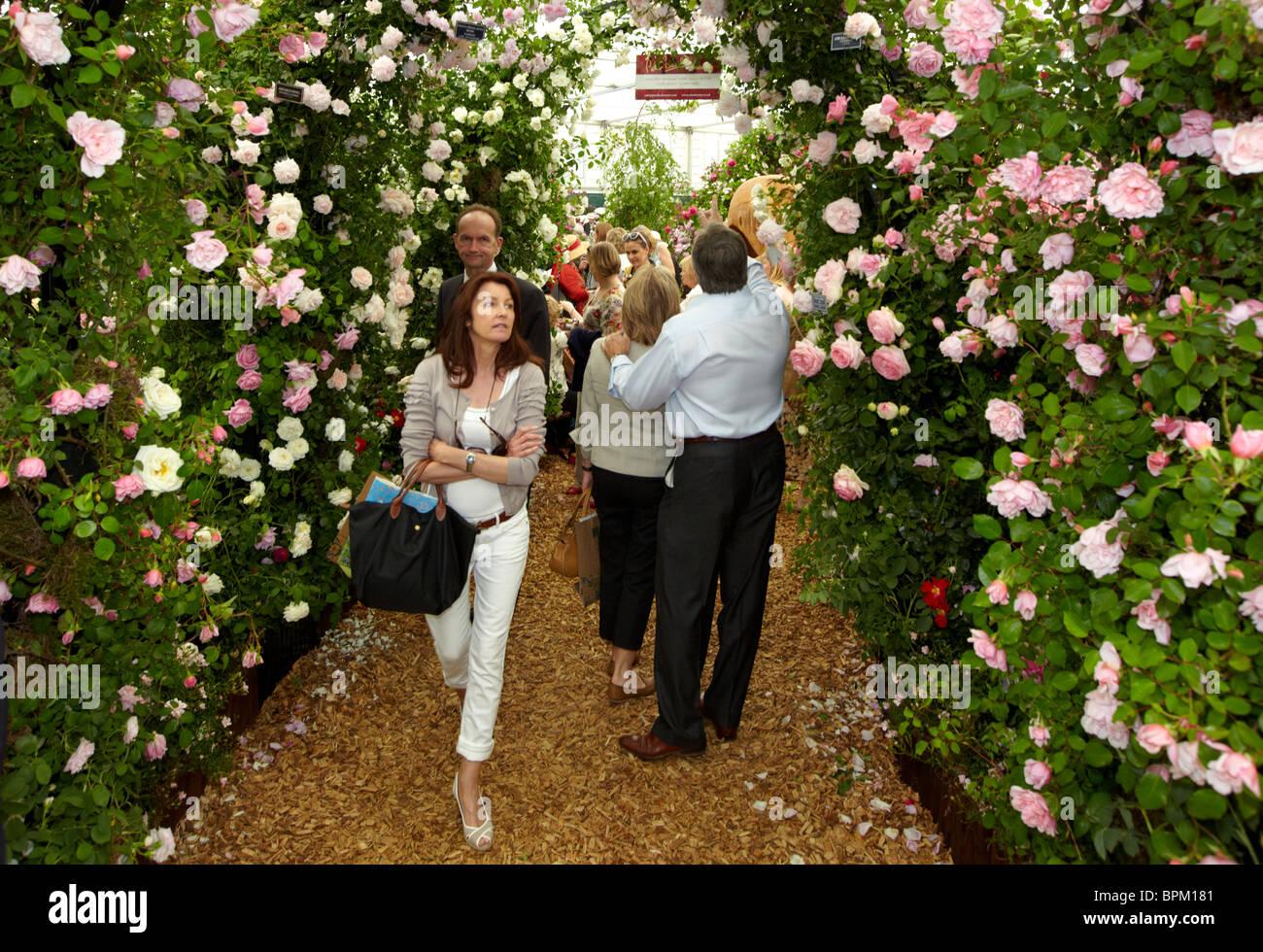 La gente oler las rosas en el Chelsea Flower Show de Londres Reino unido Foto de stock