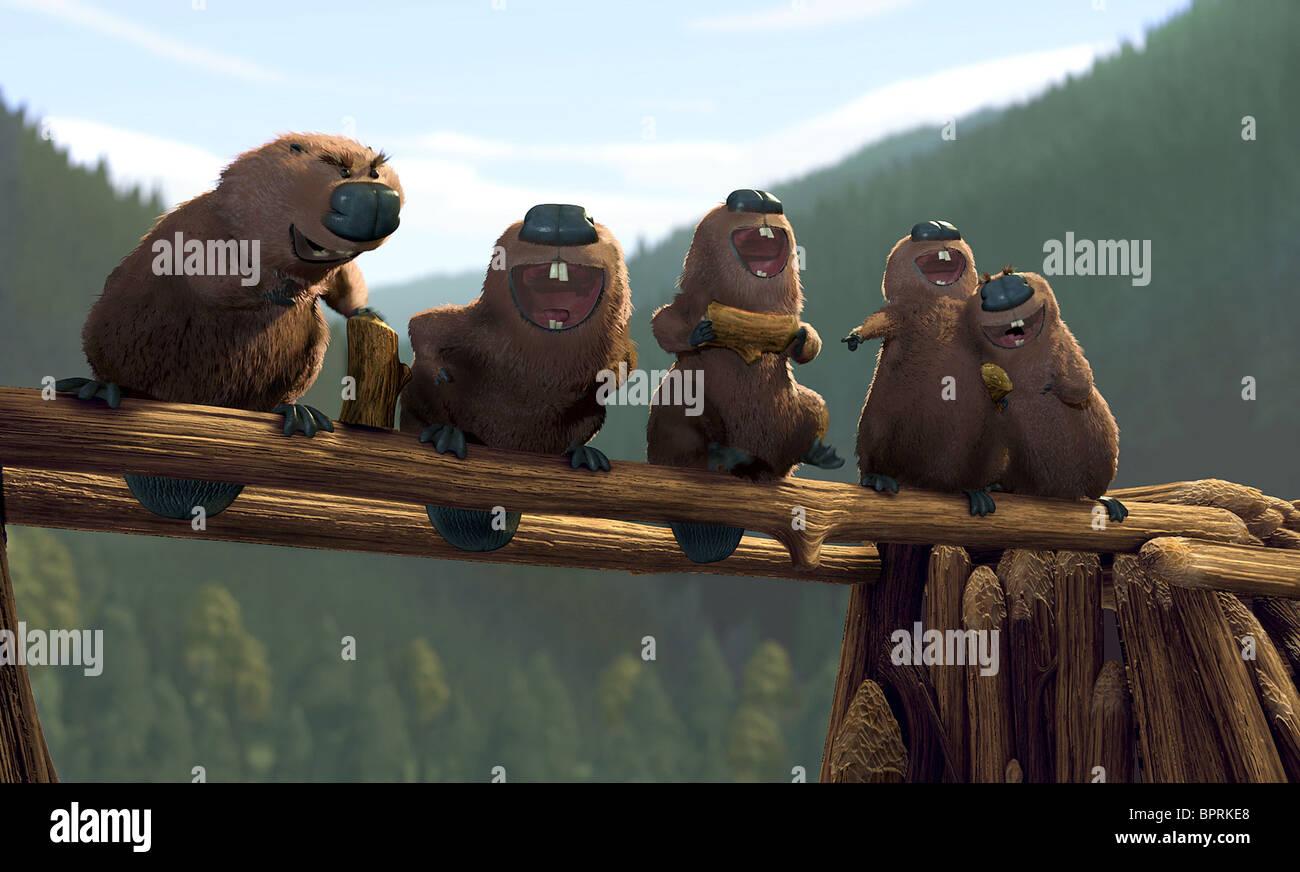 REILLY, castores, OPEN SEASON, 2006 Foto de stock