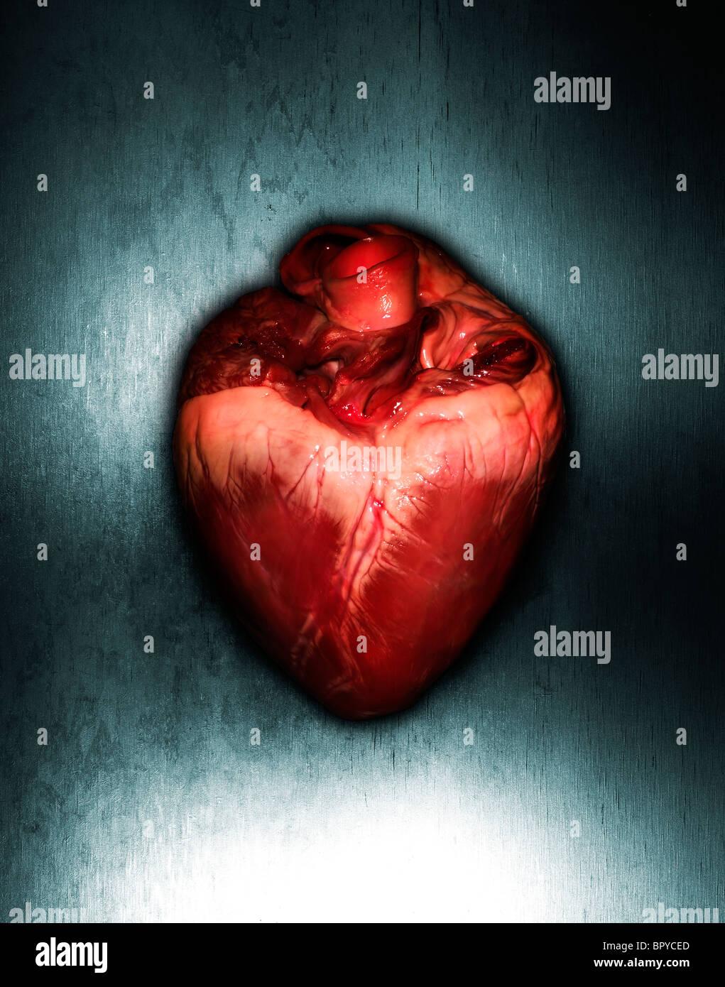 Un corazón sobre un fondo de metal con una iluminación dramática Imagen De Stock