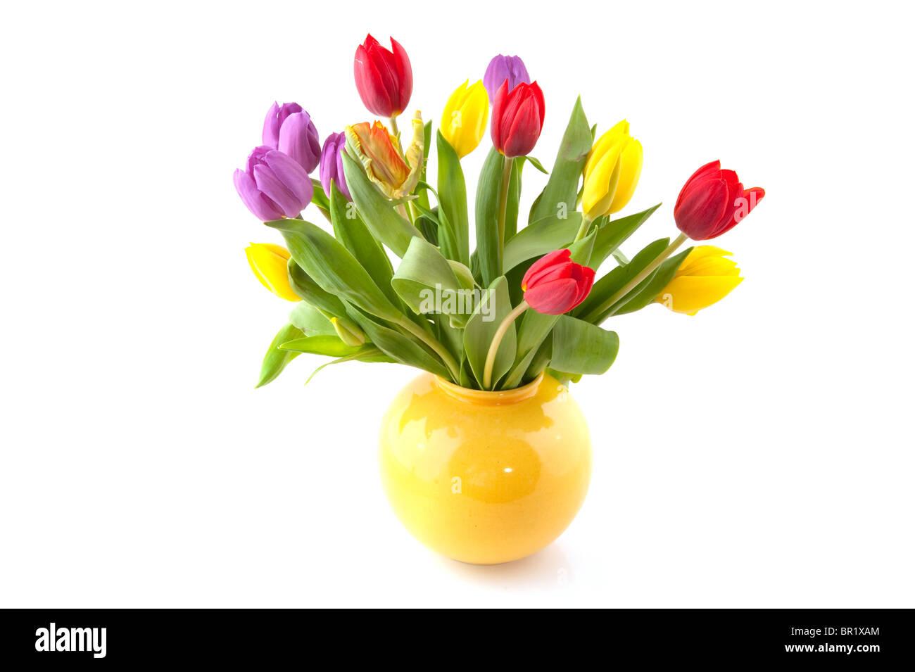 Colorido Ramo de tulipanes en florero amarillo Foto de stock