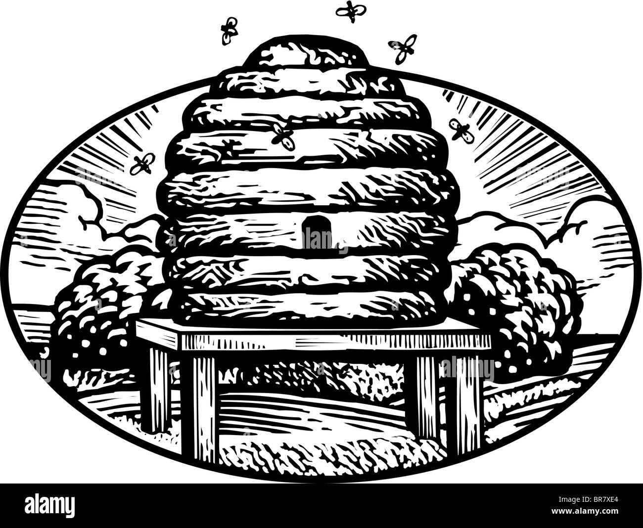 Bee Hive Illustration Imágenes De Stock & Bee Hive