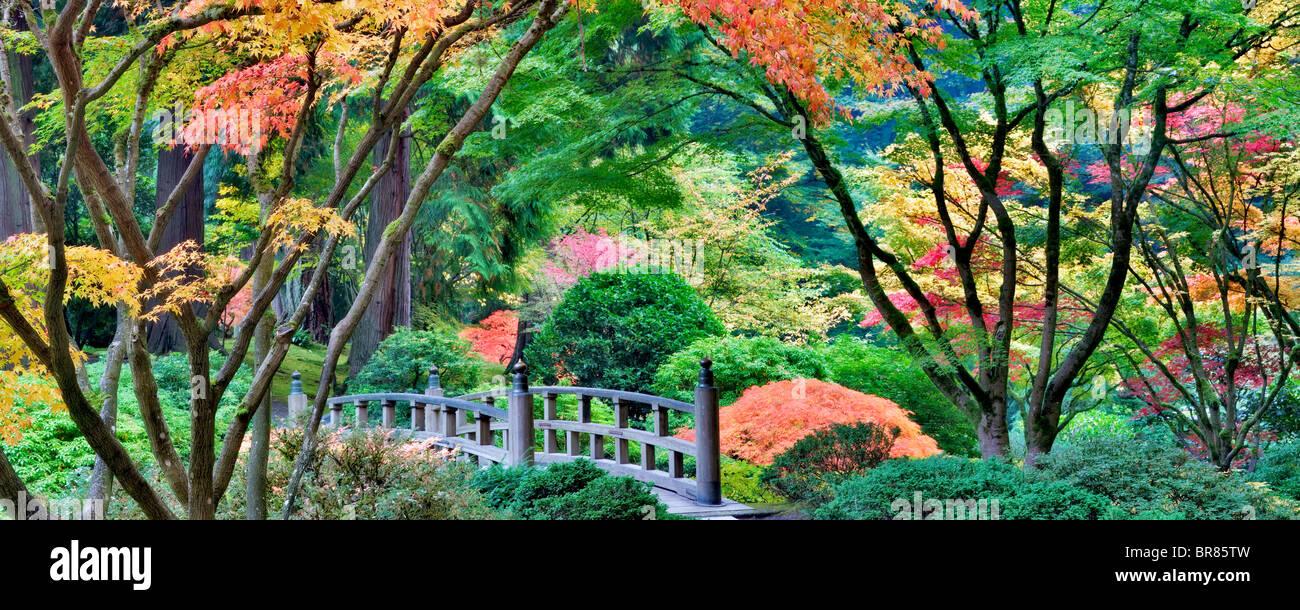 Portland jardines japoneses con puente y colores del otoño. Oregon Imagen De Stock