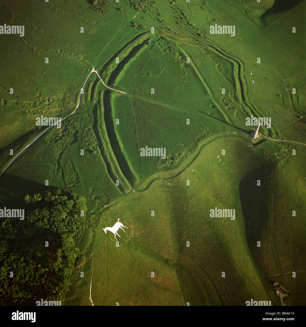 Imagen aérea de Oldbury Camp Hill Fort con Cherhill White Horse, Cherhill abajo, Calne, Wiltshire, Inglaterra, Imagen De Stock