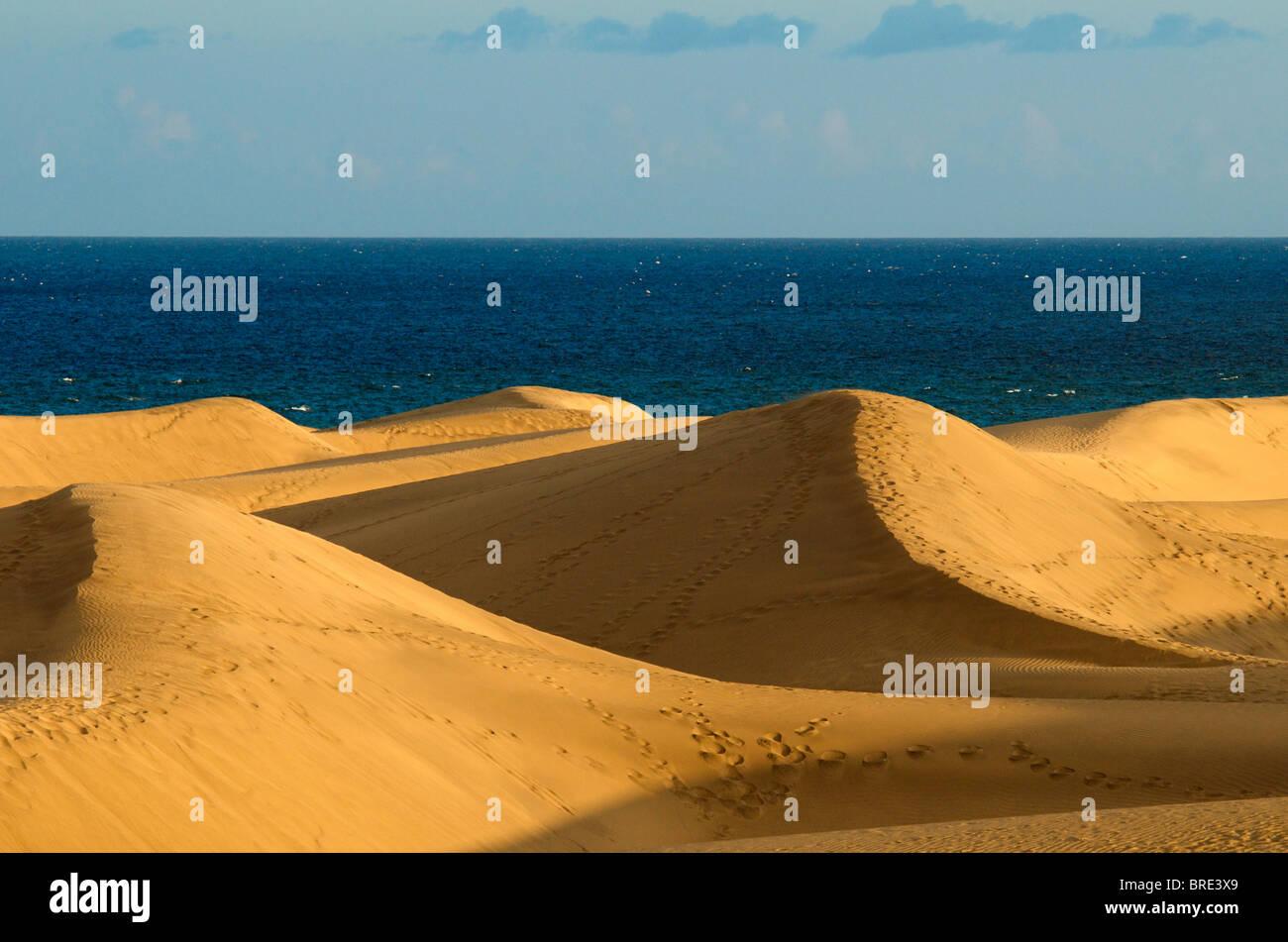 Las dunas de arena de Maspalomas, Gran Canaria, Islas Canarias, España Imagen De Stock