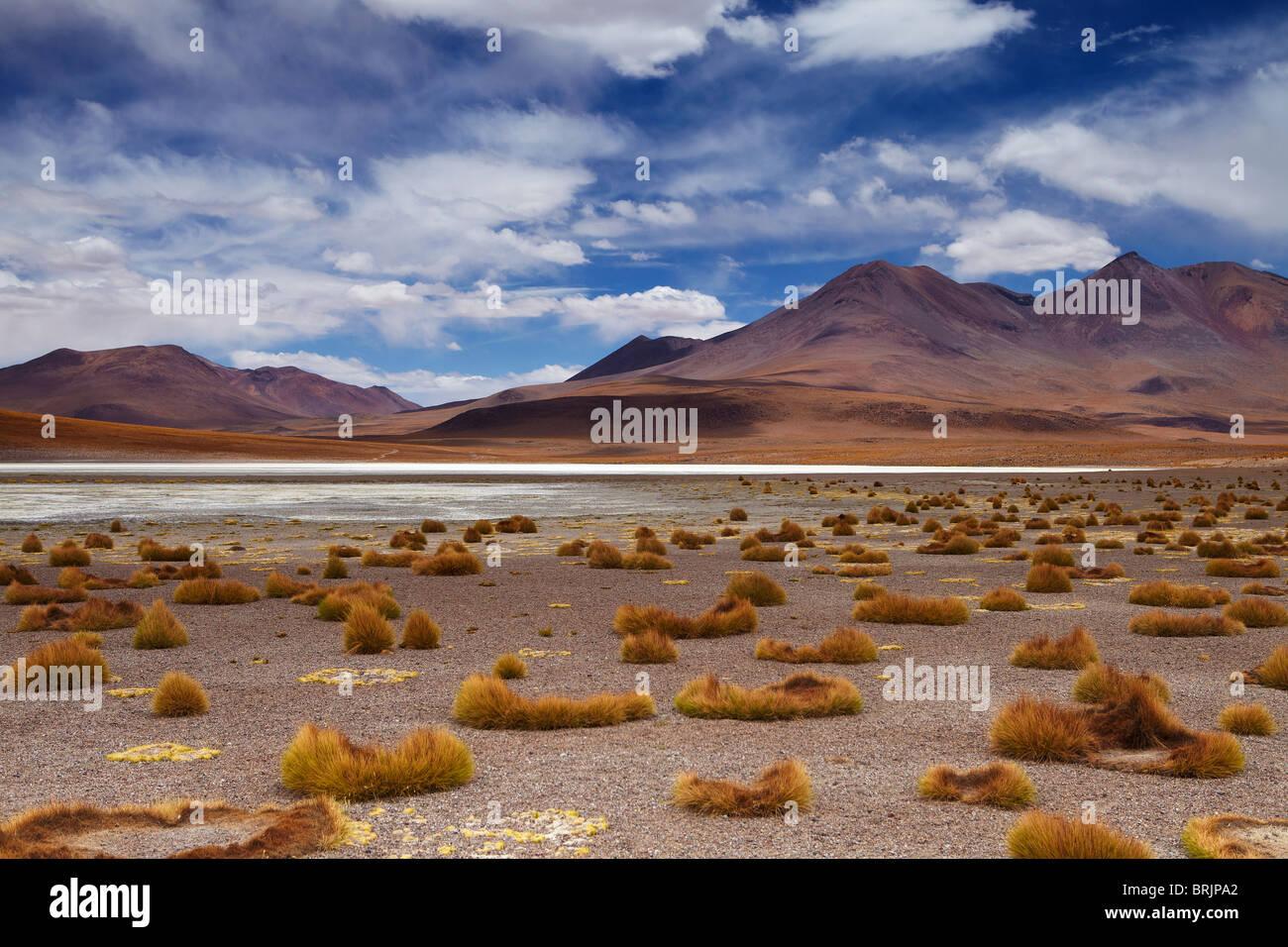 La remota región del alto desierto, el altiplano y los volcanes cerca Tapaquilcha, Bolivia Imagen De Stock