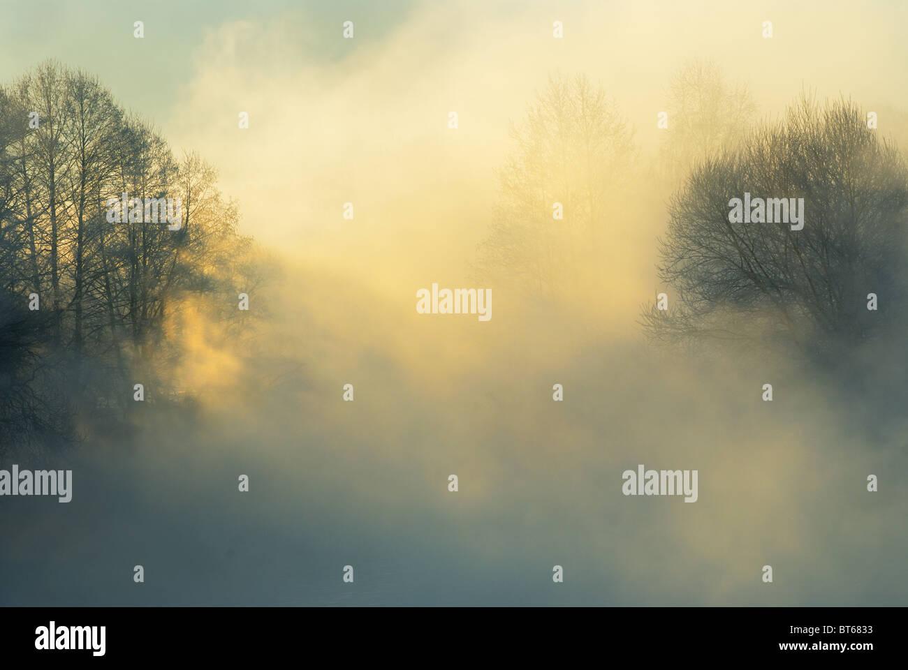 La helada mañana de invierno Imagen De Stock