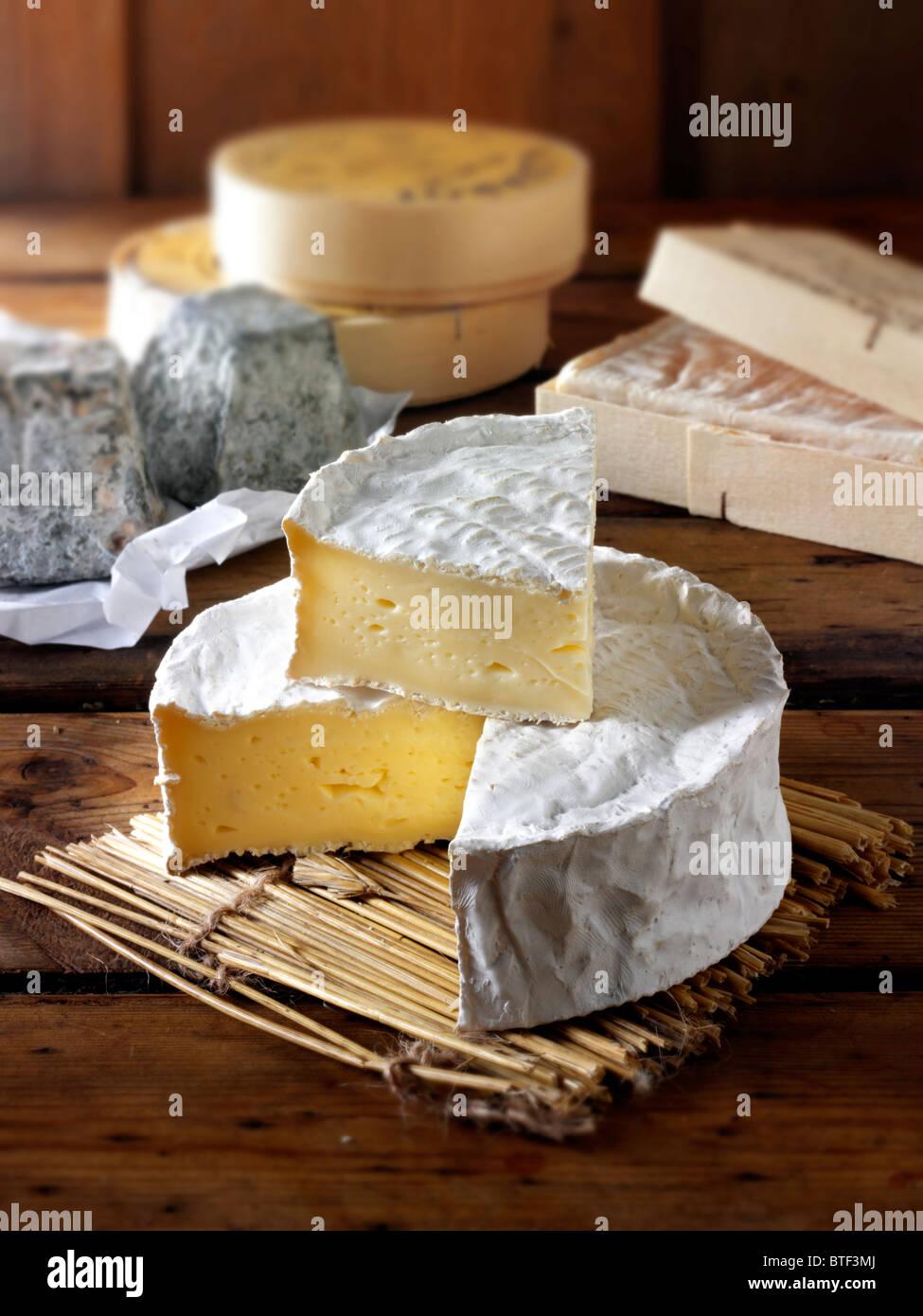 Coulommier tradicional queso francés Imagen De Stock