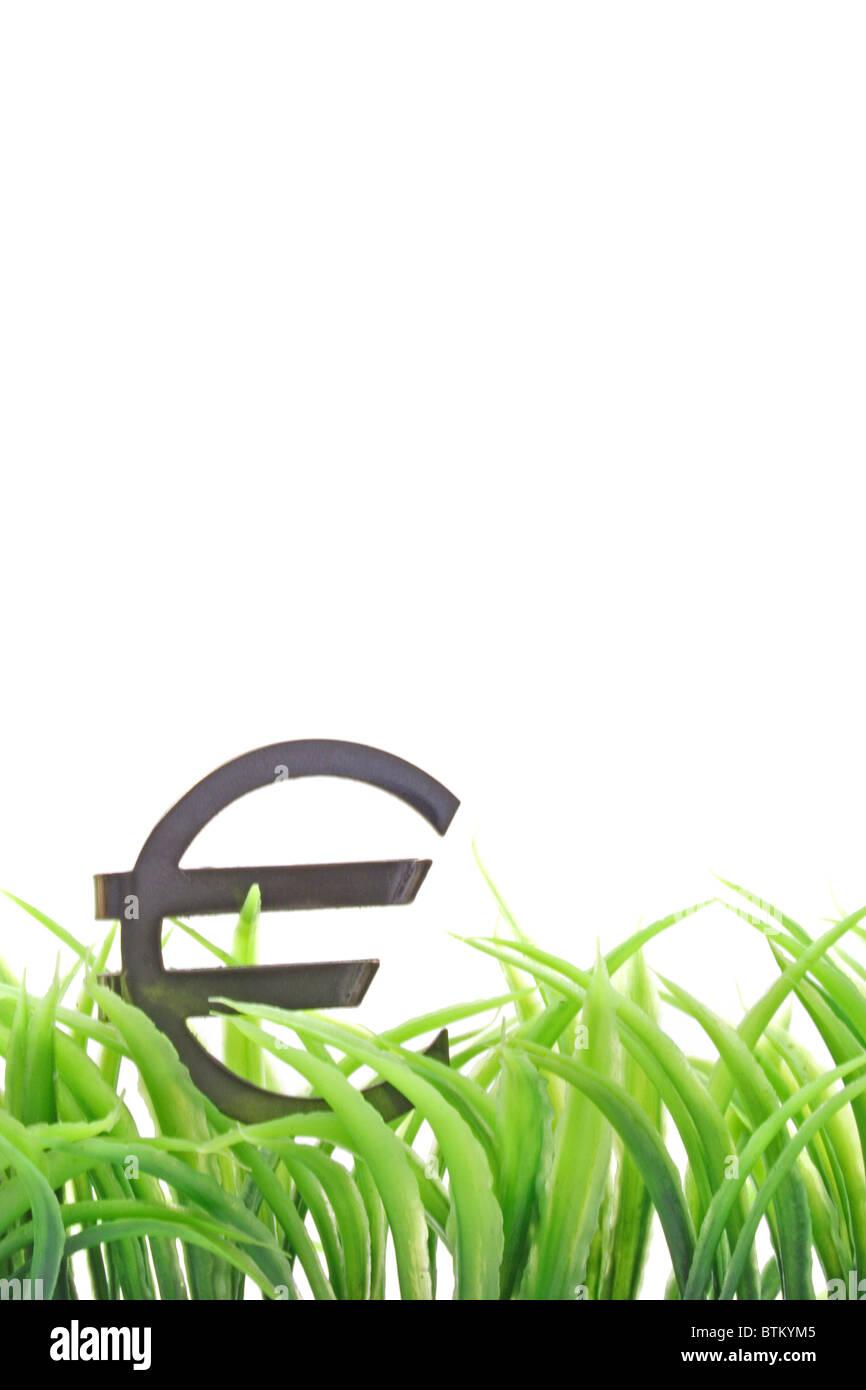 Un signo de euro en algunas briznas de hierba. Todas aisladas sobre fondo blanco. Imagen De Stock
