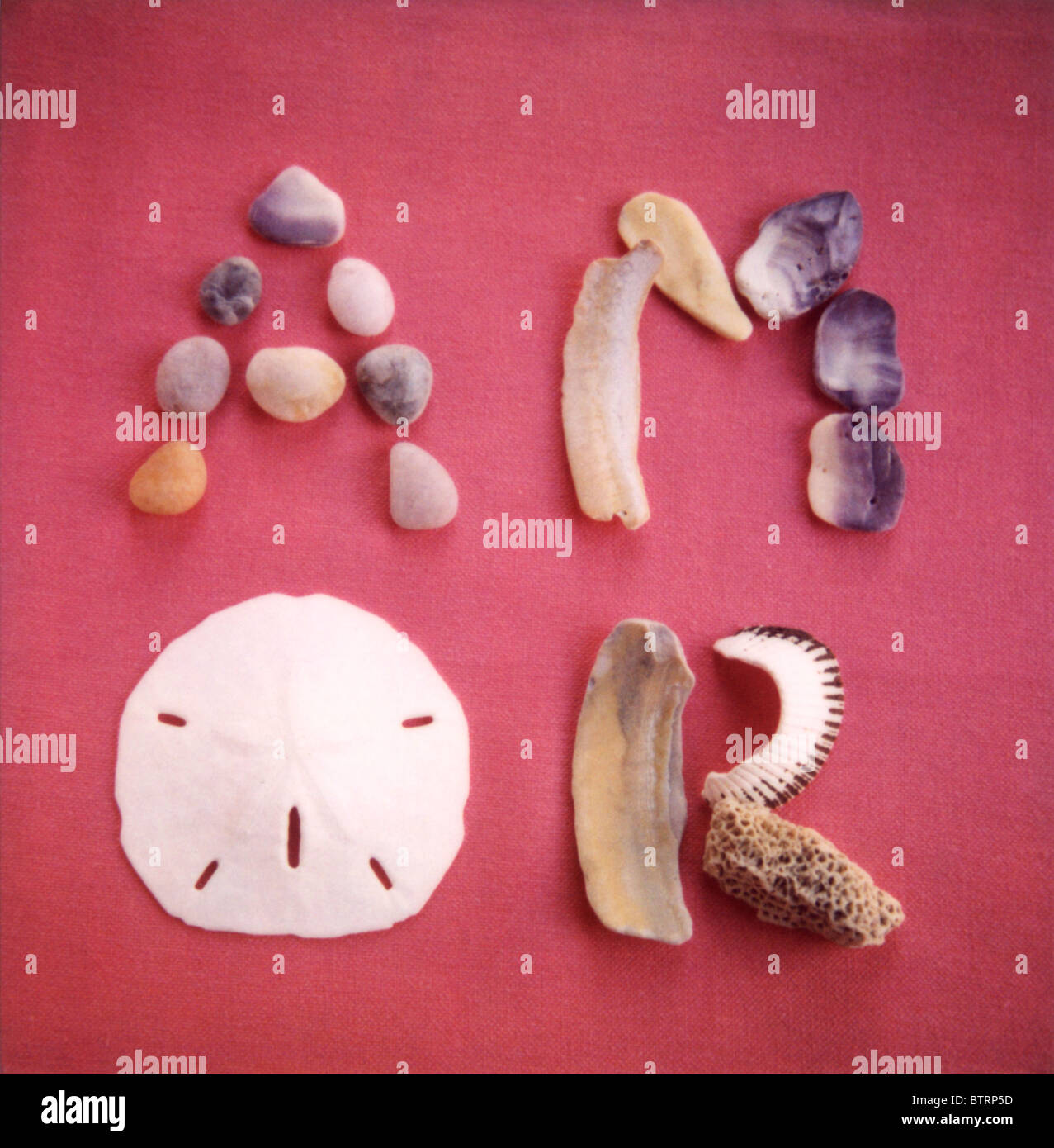 La palabra Amor creado con conchas, piedras y coral Imagen De Stock