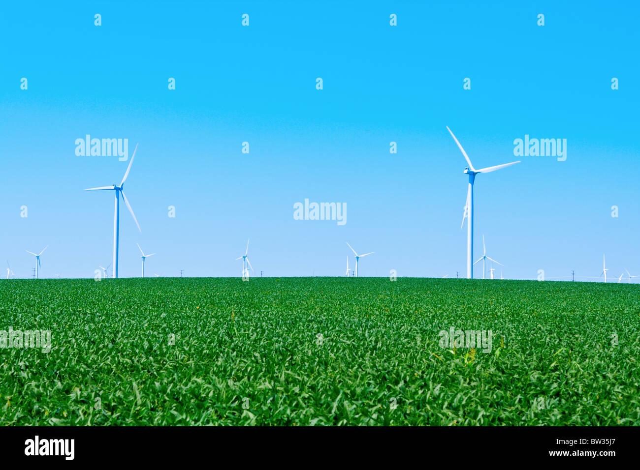 Granja del molino de viento Imagen De Stock