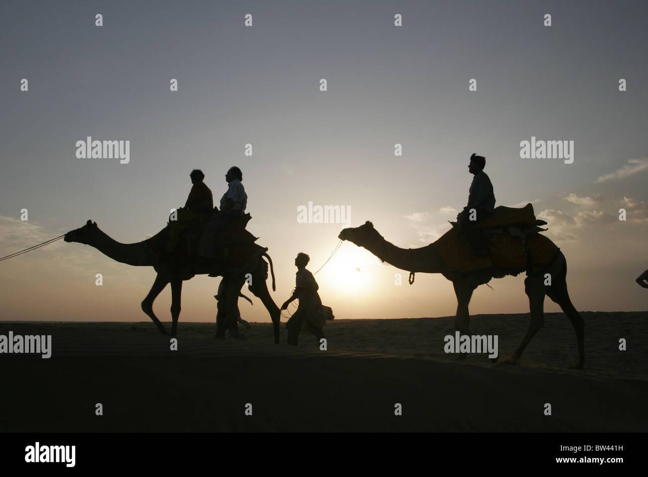 Los turistas disfrutan de un paseo en camello en Sam, Jaisalmer, Rajasthan, India. Imagen De Stock