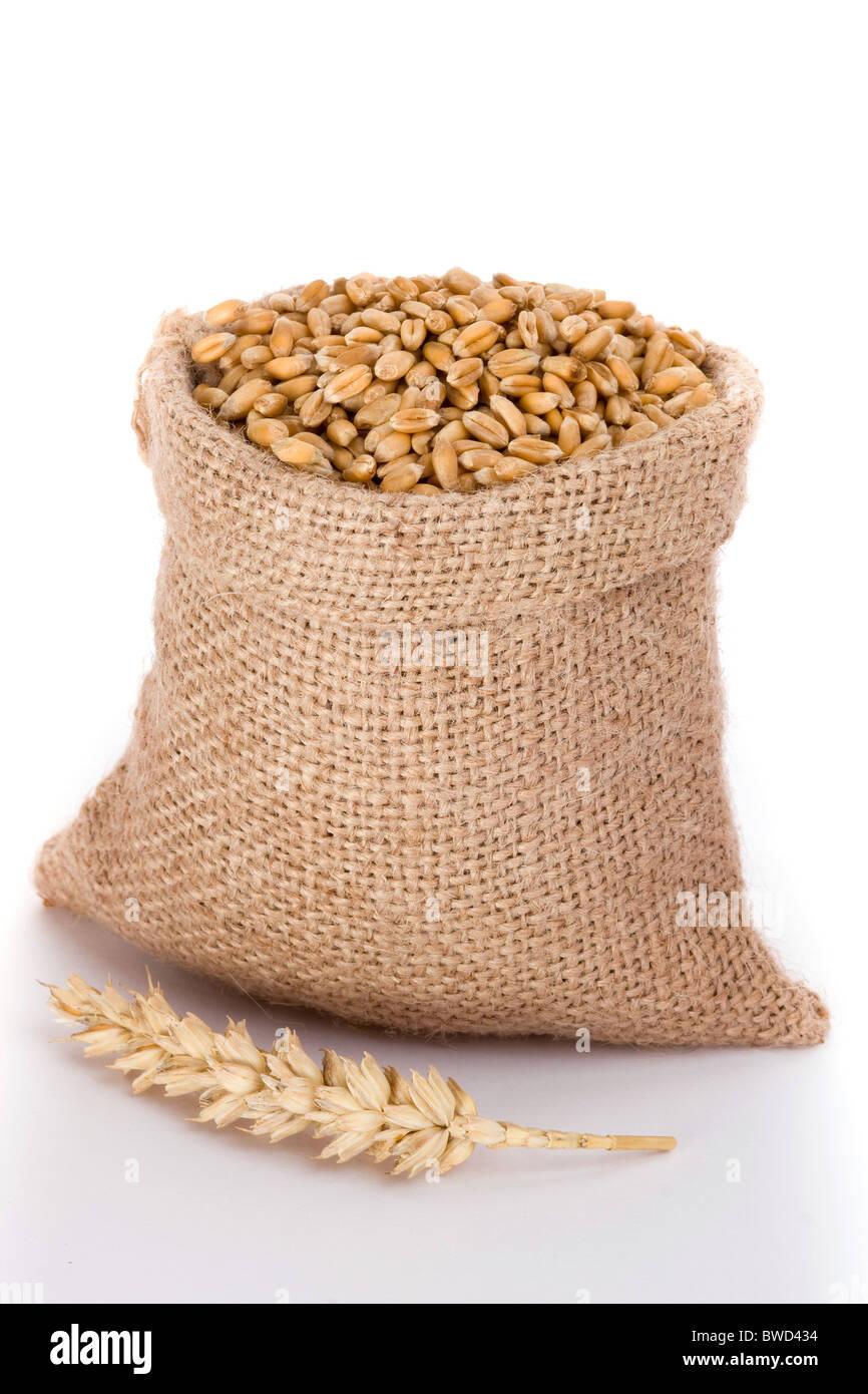 Trigo en pequeños sacos de arpillera Imagen De Stock