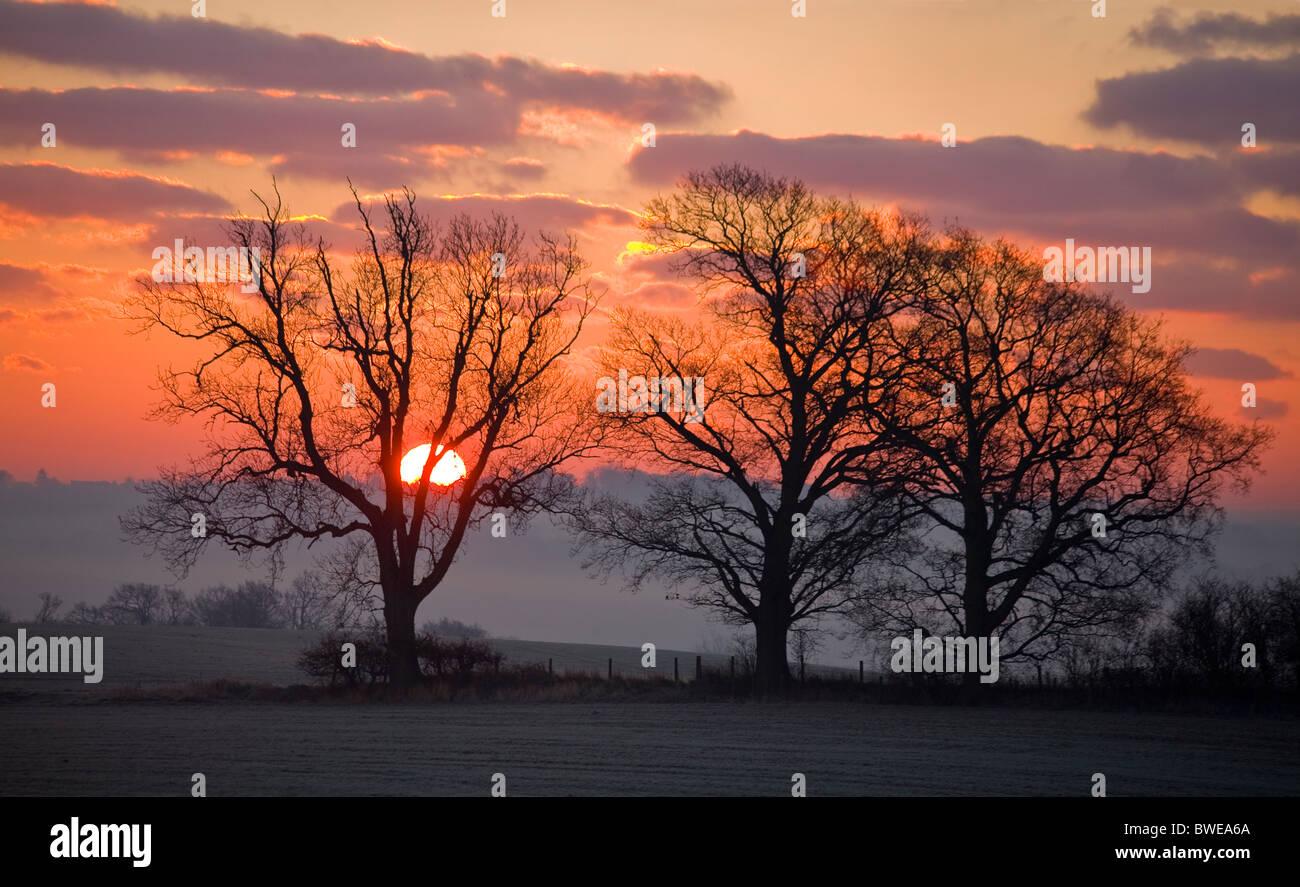 Sol de invierno sube de misty Rother valley a través de colinas boscosas en rojo púrpura cielo con nubes doradas Foto de stock