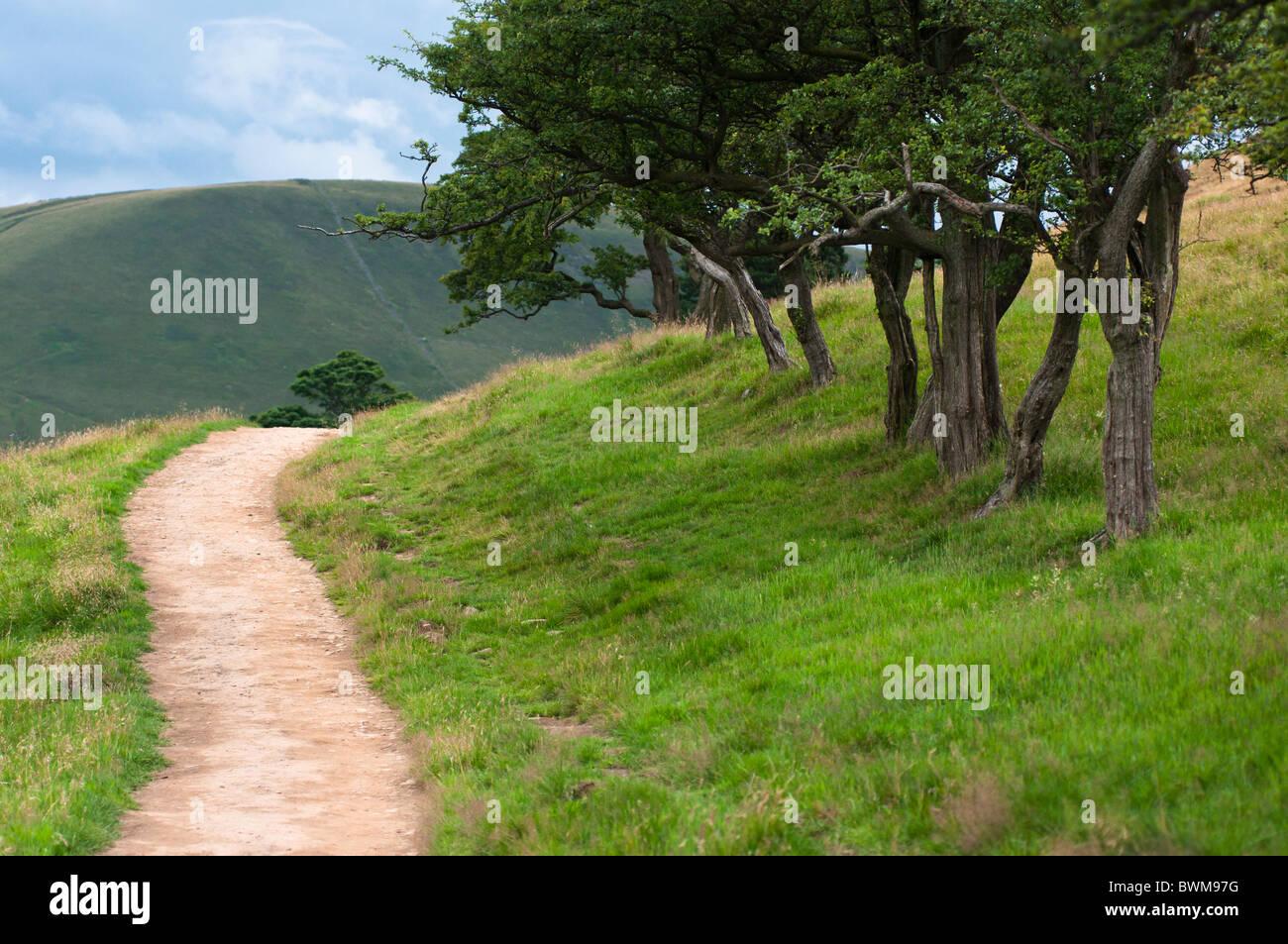 El Pennine camino cerca de la aldea de Edale, Derbyshire Dales, REINO UNIDO Imagen De Stock