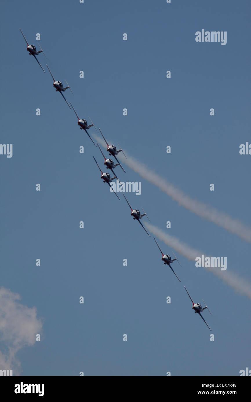 Las Fuerzas canadienses Escuadrón de demostración aérea Foto de stock