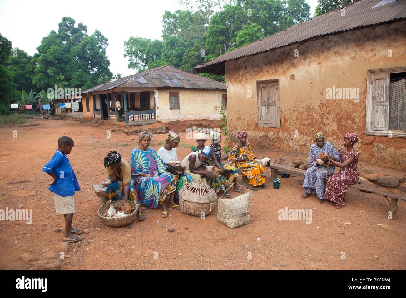 Los aldeanos se reúnen para recibir vacunas para sus pollos en Port Loko, en Sierra Leona, en África occidental. Imagen De Stock