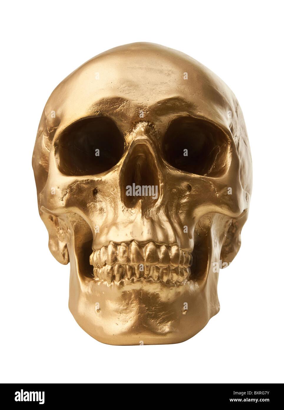 Golden cráneo humano aislado sobre fondo blanco. Foto de stock