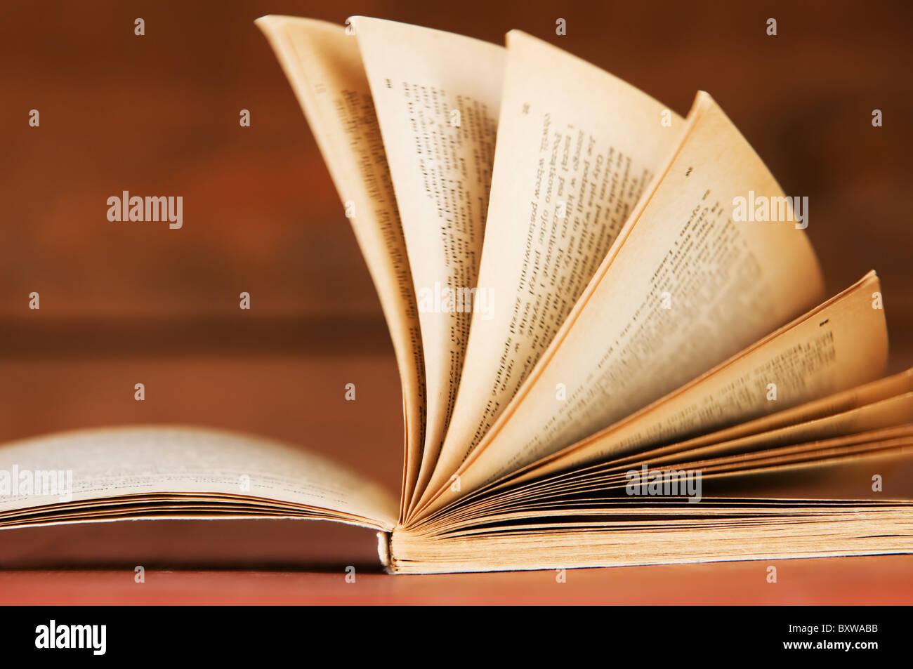 Libro abierto de estilo retro sobre fondo de madera. Conceptos de Educación Imagen De Stock