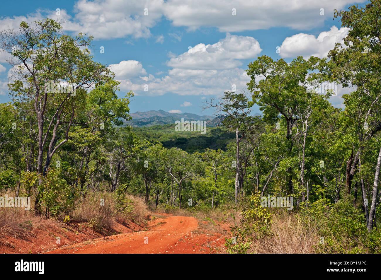 Una vista de las montañas y bosque autóctono en el valle Kilombero bajas de las tierras altas del sur Imagen De Stock