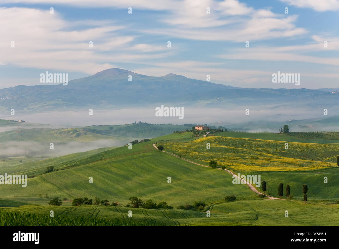 Vía, San Quirico d'Orcia, Val d'Orcia, Toscana, Italia Foto de stock