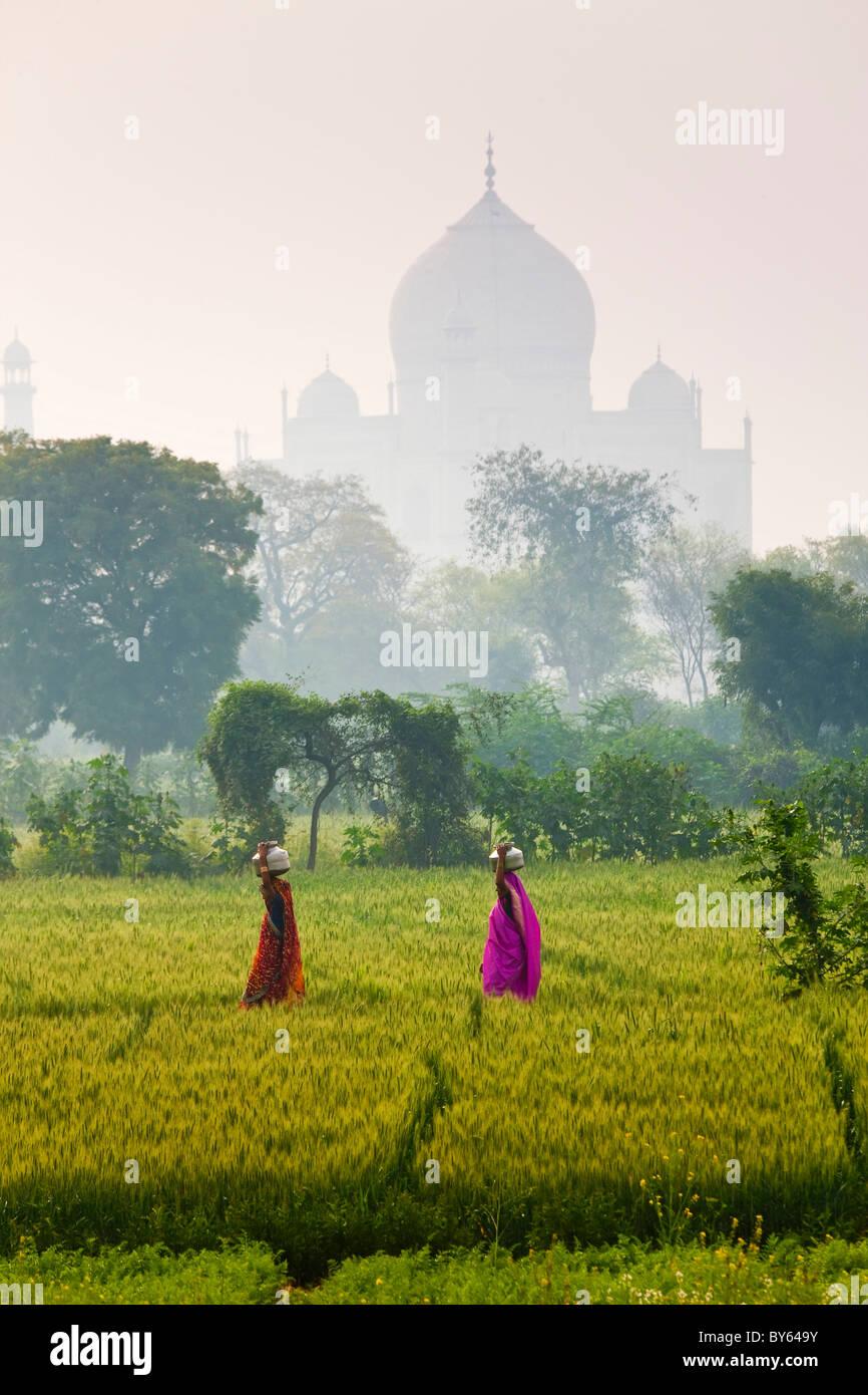 Llevar agua potes, Taj Mahal, Agra, India Imagen De Stock