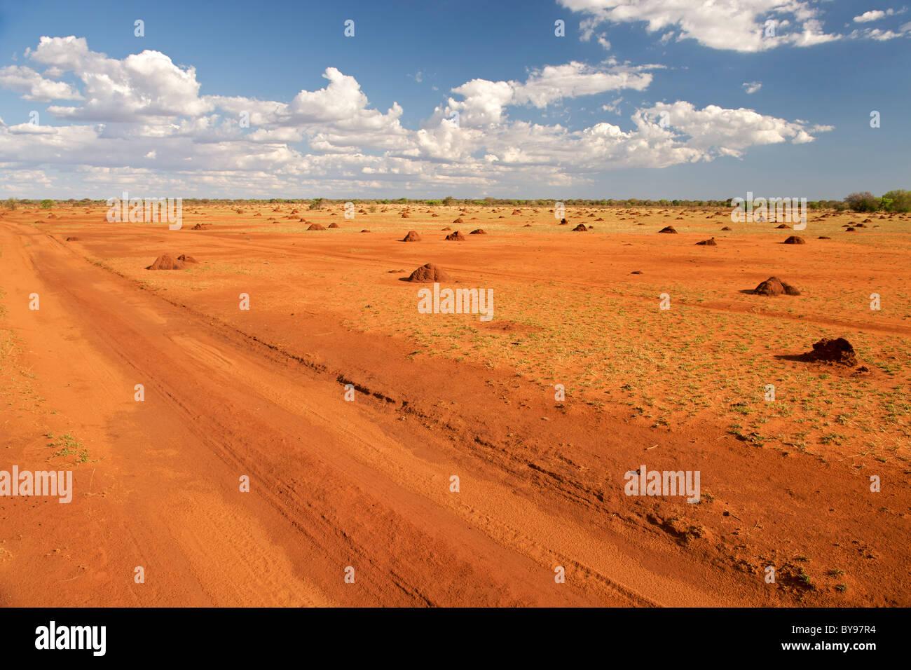 Árido paisaje cubierto de hormiguero, en el suroeste de Madagascar en la carretera que conduce de Betioky Tsimanampesotse Foto de stock