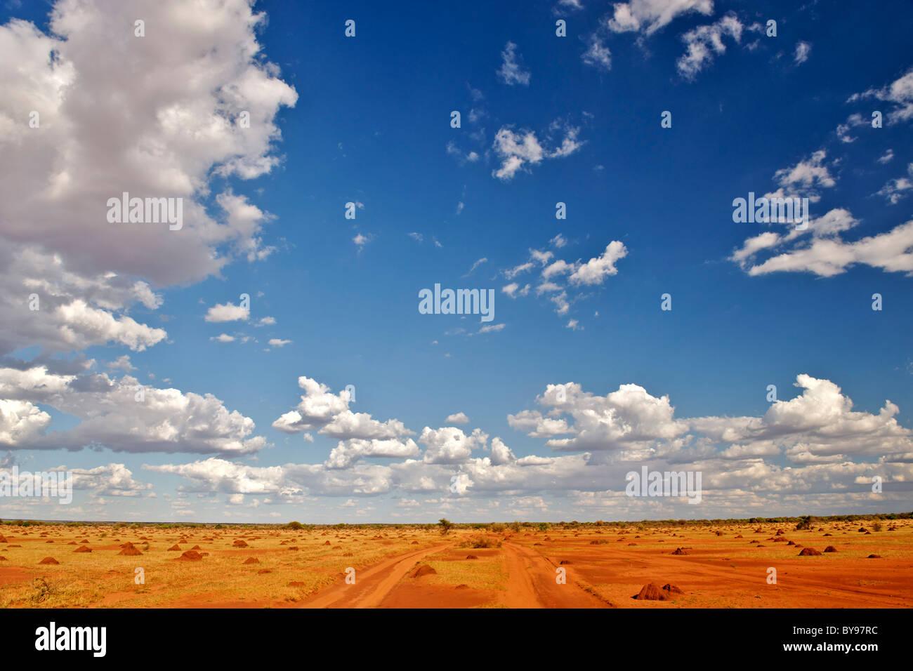 Árido paisaje cubierto de hormiguero, en el suroeste de Madagascar en la carretera que conduce de Betioky Tsimanampesotse Imagen De Stock