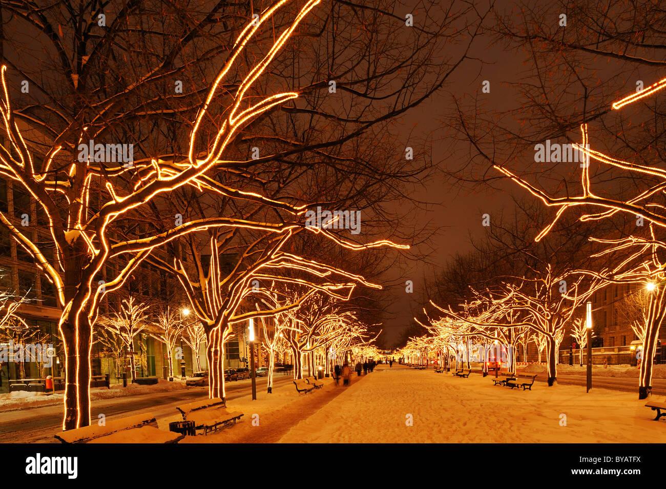 Las luces de Navidad en el paseo Unter den Linden, Berlín, Alemania, Europa Imagen De Stock