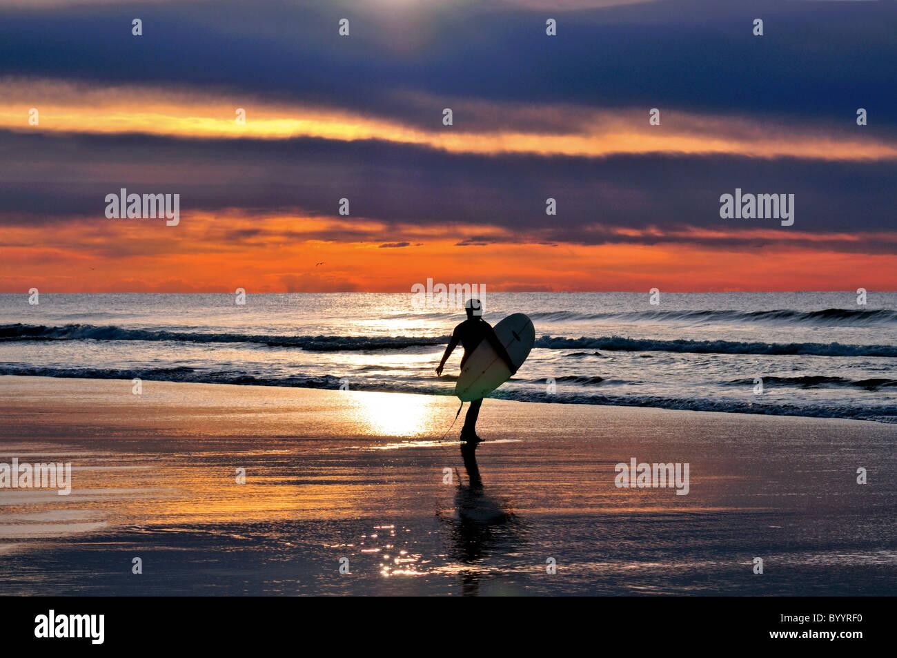 Portugal, Algarve: surfista en la playa Praia do Amado Foto de stock