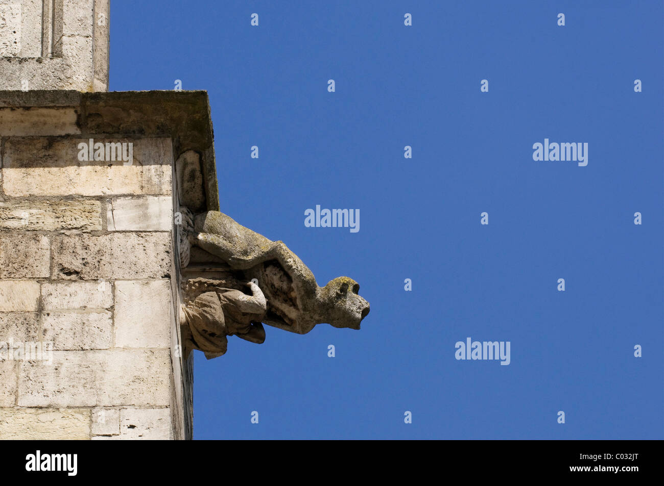 Gárgola, mono, escultura en la fachada de la catedral de Ratisbona, Regensburg, el Alto Palatinado, Baviera, Alemania, Foto de stock