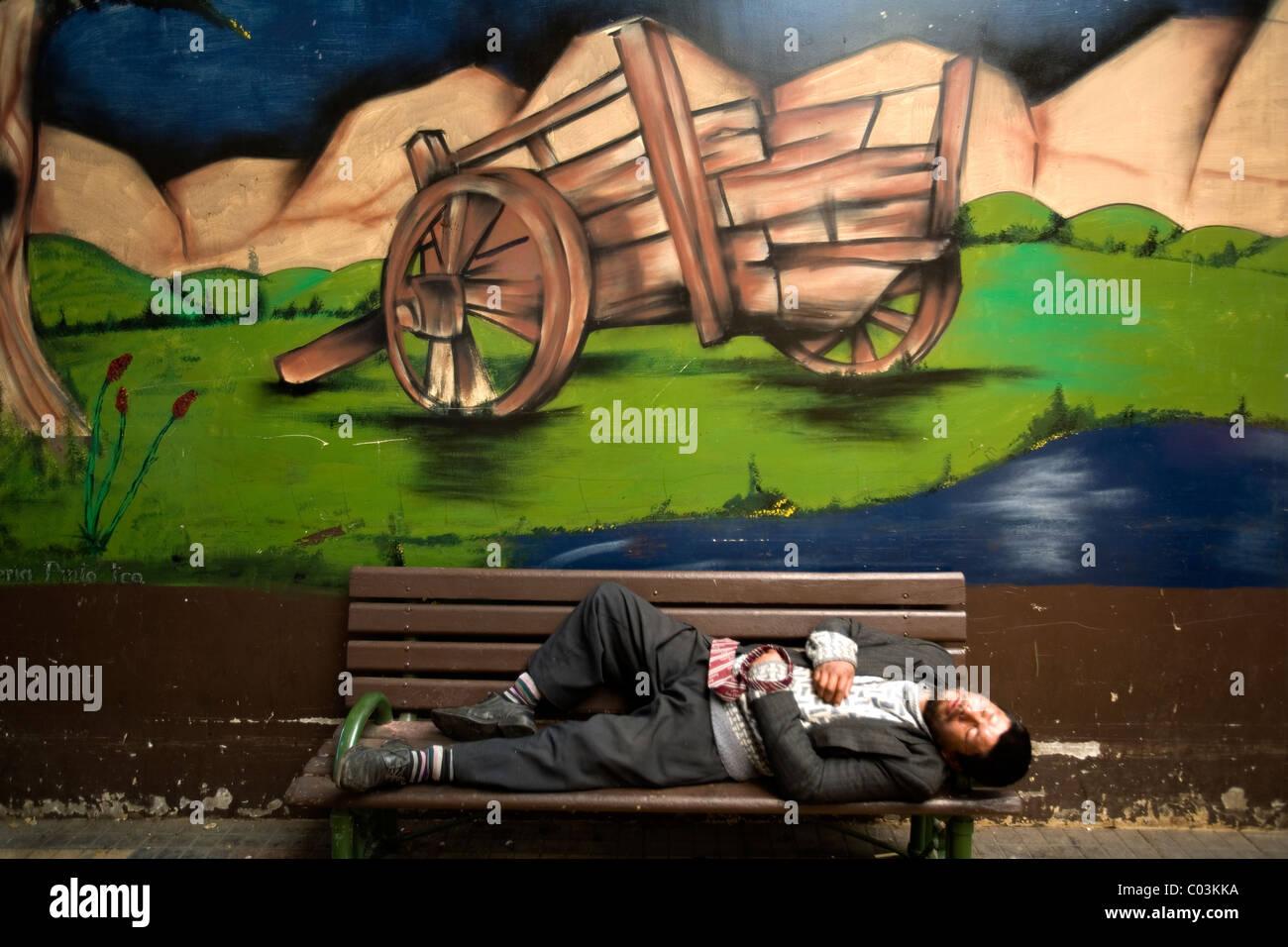 Hombre Durmiendo En Un Banco En El Mercado Anibal Pinto De Temuco