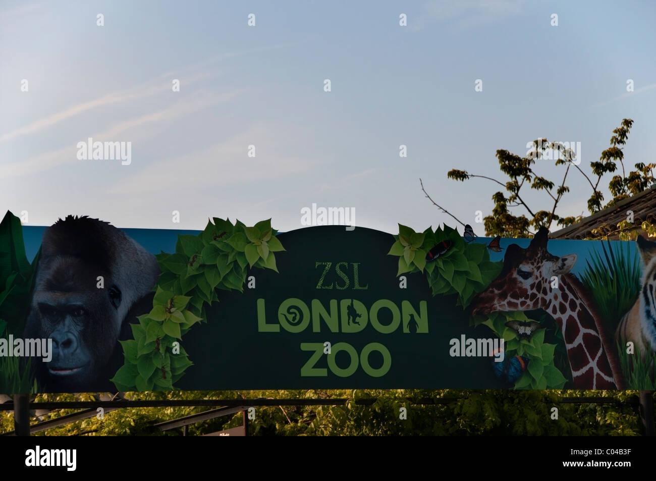 Signo del Zoo de Londres, cerca de la entrada, Jardines Zoológicos, Regents Park, Inglaterra, Reino Unido, Imagen De Stock
