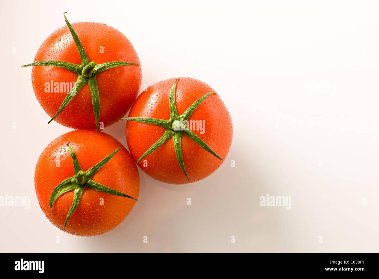 Vid tomates frescos sobre un fondo blanco. Imagen De Stock