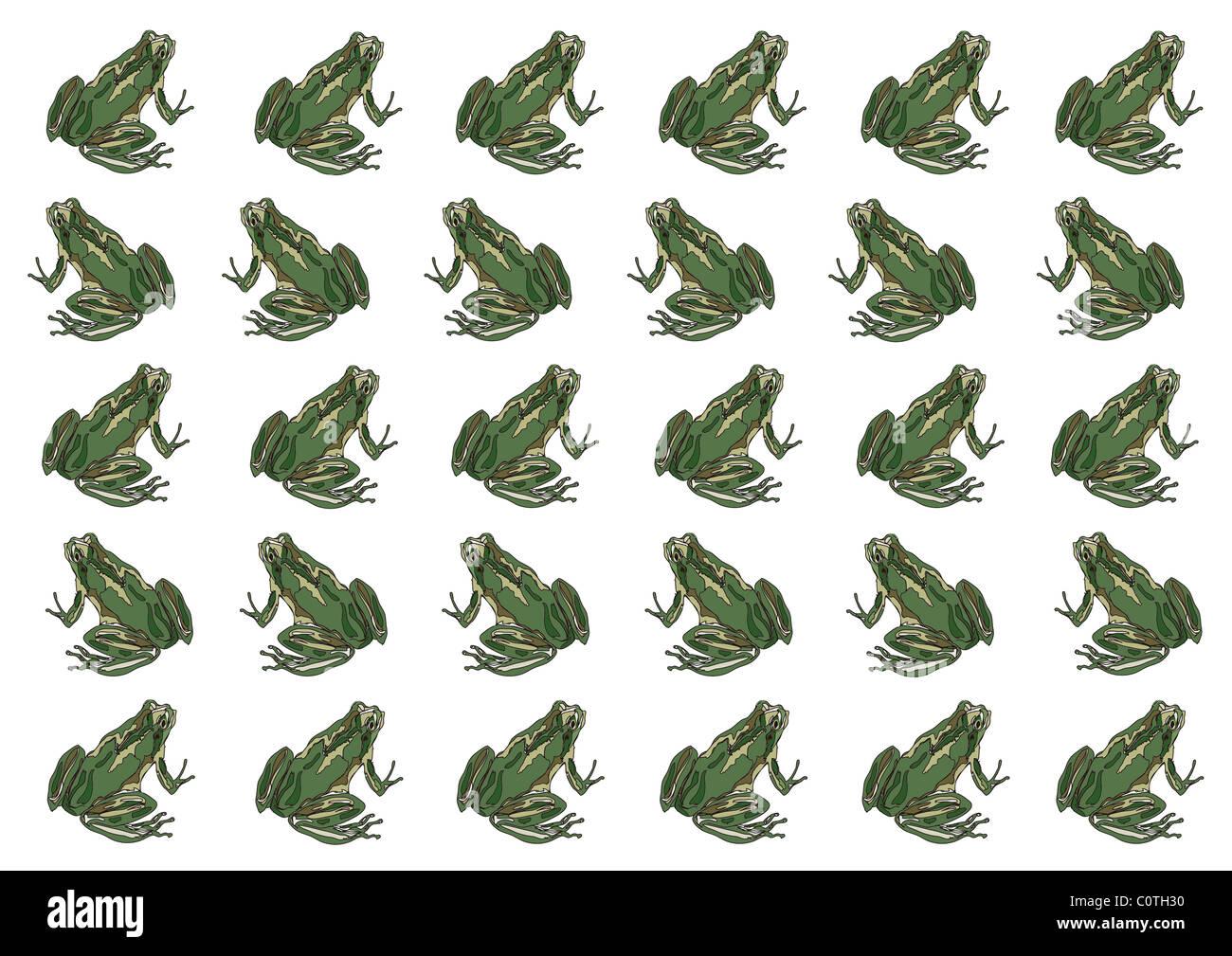 Patrón de pintura japonesa, Japonés Tree Frog Imagen De Stock
