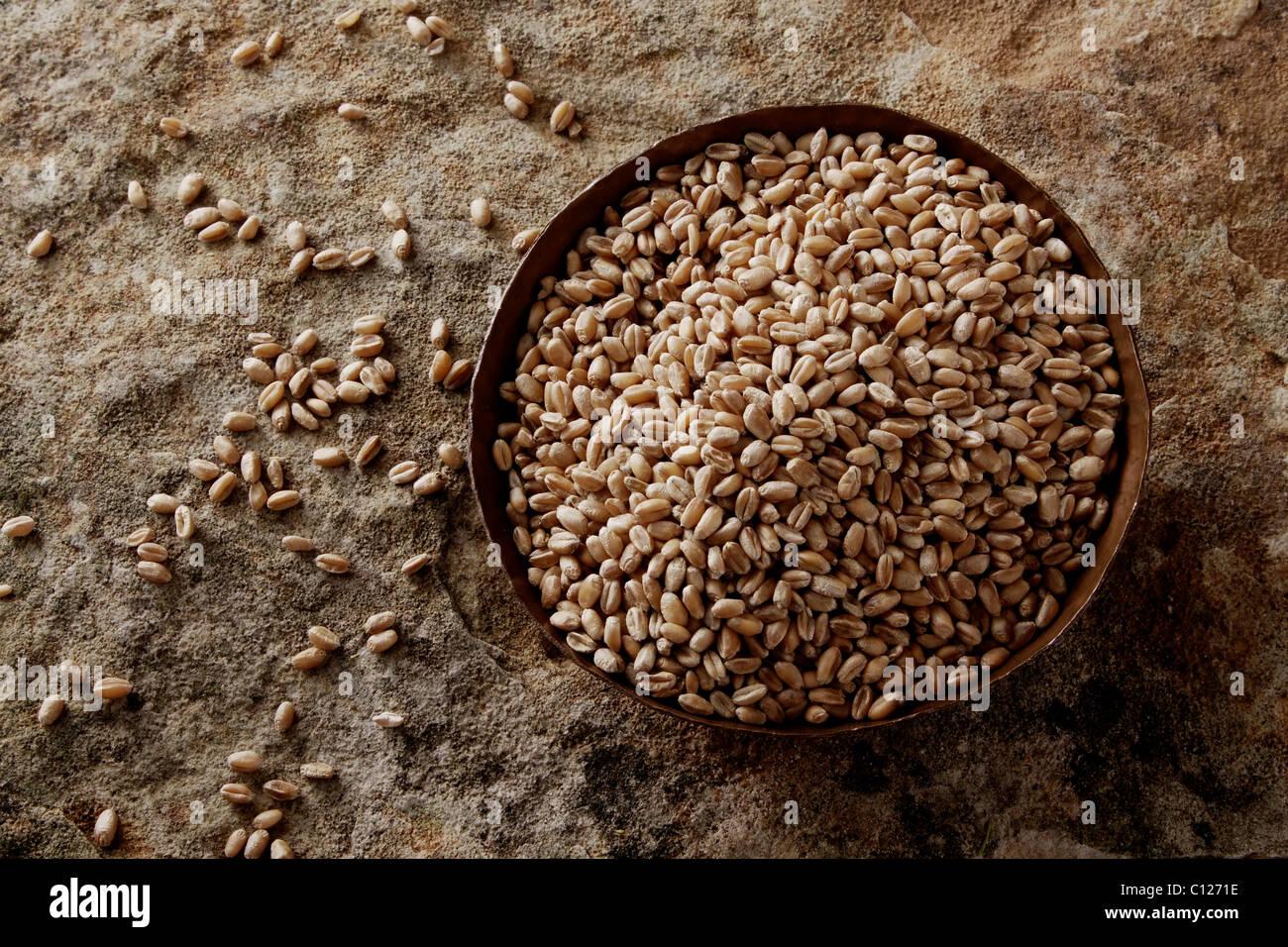 Los granos de trigo (Triticum) en un recipiente de cobre sobre una superficie de piedra Imagen De Stock