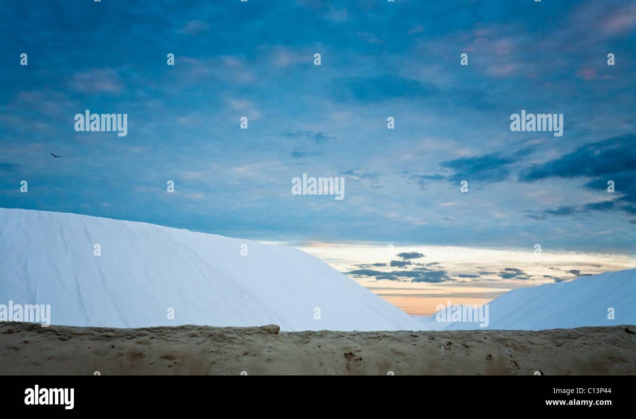 Las existencias de sal al atardecer. La sal refinada de las balsas de evaporación cerca de Las Coloradas se Imagen De Stock